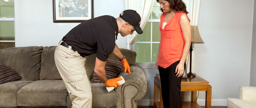 The Villages, FL carpet upholstery cleaning